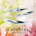 『Cafe Ring(カフェリング)』取扱いスタート
