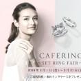 SET RING FAIR〜桐のリングケースプレゼント〜
