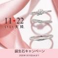【11♡22いい夫婦】誕生石無料セッティングキャンペーン