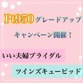 pt950グレードアップキャンペーン開催!