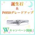 【ツインズキューピッド】・【11♡22いい夫婦ブライダル】Wキャンペーン!