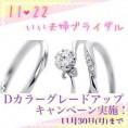 【いい夫婦ブライダル】Dカラーグレードアップキャンペーン!