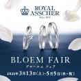 ロイヤル・アッシャー『BLOEM FAIR』春の特別ブライダルフェア